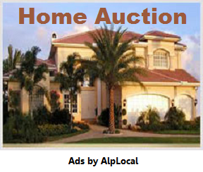AlpLocal Home Auction Bid Shopping Time