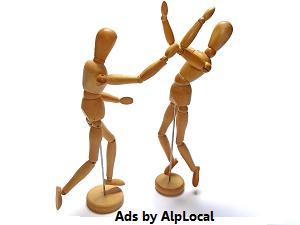 AlpLocal Martial Arts Mobile Ads