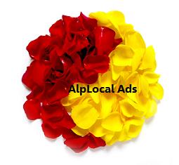 AlpLocal Roses Mobile Ads
