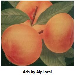 AlpLocal Peaches Mobile Ads